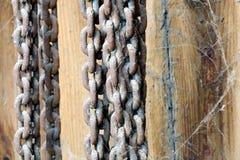 生锈和布满蜘蛛网的链子 库存照片