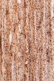 生锈在被镀锌的铁板材 免版税库存照片