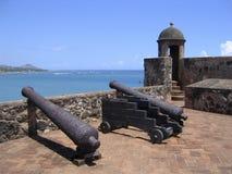 生锈的大炮加勒比堡垒老 库存照片