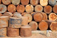 生锈的油桶和小犬座 库存照片