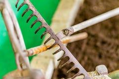生锈的犁耙 库存照片