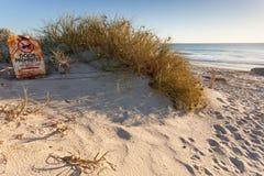 生锈的狗在珀斯海滩没有禁止狗签字 库存图片