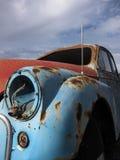 生锈的甲虫 库存照片