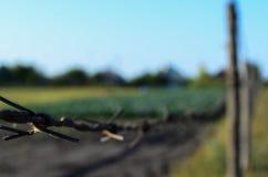 生锈的篱芭在一个小村庄 库存照片