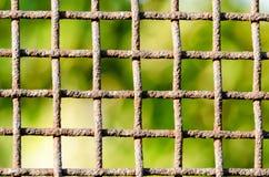 生锈的篱芭由金属滤网,方形的细胞制成,反对模糊的绿色叶子背景  关闭 图库摄影