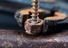 生锈的螺丝和螺栓 免版税库存照片
