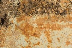 生锈的车库门或铁板料 库存图片