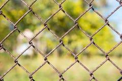 生锈的金属格栅篱芭宏指令和自然背景 库存图片