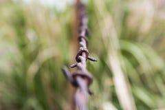 生锈的铁丝网范围 免版税库存照片