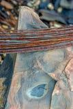 生锈的铁导线卷在岩石的 免版税库存照片