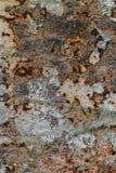 生锈的铁,老金属表面上的破裂的油漆,生锈的金属板料纹理与破裂和片状油漆,腐蚀, de的 库存照片