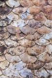 生锈的铜鱼鳞纹理 免版税库存图片