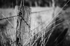 生锈的锋利的木材和金属倒钩铁丝网 免版税图库摄影