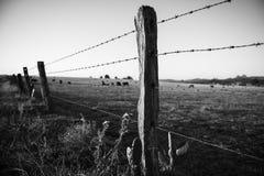 生锈的锋利的木材和金属倒钩铁丝网 免版税库存照片