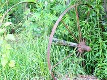 生锈的马车车轮高草 库存照片
