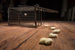 生锈的鼠笼子 免版税库存图片