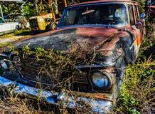 生锈,老, junked汽车在森林 库存照片