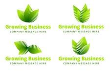 生长叶子商标 向量例证