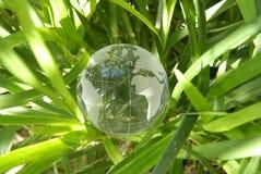 生长土壤世界 免版税图库摄影