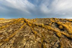 生长在一个小岛的岩石的草、青苔和地衣在群岛在克里斯蒂安桑,挪威 蓝天 免版税图库摄影