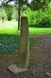 生长在一块Ogham常设石头的青苔在爱尔兰 图库摄影