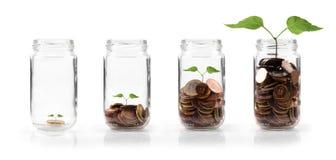 生长在储蓄概念的金钱 库存照片
