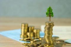 生长在堆的树金黄硬币和帐薄或者信用推车、成长企业财务投资和公司社交 免版税库存图片