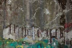 生长在墙壁上的混凝土的绿色青苔 有G的混凝土墙 库存图片