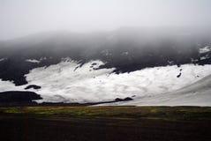 生长在欺骗岛,南极洲的青苔 库存照片