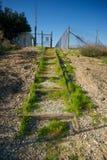 生长在石渣步骤的草 免版税图库摄影
