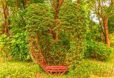 生长在绿草的一个金属心脏框架的植物 免版税图库摄影