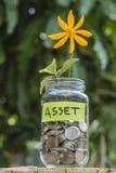 生长在玻璃瓶子的硬币的花和新芽有标记财产的反对迷离房子backgeound 免版税图库摄影