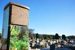生长垂直殡葬缸巴黎郊区 免版税库存图片