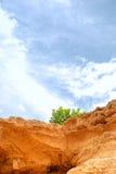 生长孤立岩石端结构树 库存照片
