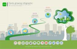生长时间安排的植物infographic与被设置的象,拯救世界并且是绿色概念 免版税图库摄影