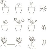 生长种子象,农学 在白色背景的稀薄的黑线 免版税库存照片
