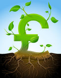 生长英镑标志喜欢有leav的植物 免版税库存照片