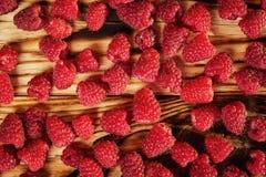 生长莓,莓背景特写镜头照片,高关于 免版税库存照片