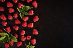 生长莓,莓背景特写镜头照片,高关于 免版税库存图片