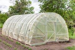 生长菜的温室在庭院里 免版税库存照片