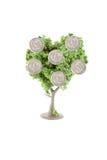 生长货币结构树 库存图片