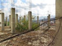 生长通过被放弃的建筑工地地板的灌木  图库摄影