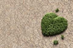 生长从肮脏的地面的心形的绿草 免版税库存照片