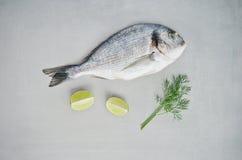生鱼、石灰和莳萝 库存照片