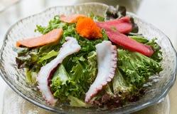 生鱼片沙拉 免版税库存照片
