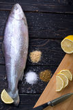 生鱼用香料 免版税库存图片
