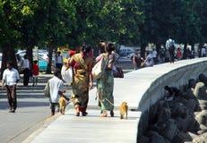 生活在印度,走与猴子的妇女 免版税库存图片