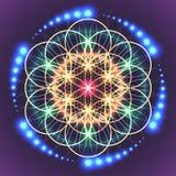 生活神圣的几何花 向量例证
