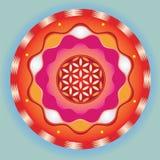 生活种子明亮的冥想的符号   免版税库存图片