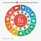 维生素B2内容在最共同的食品的 免版税库存图片